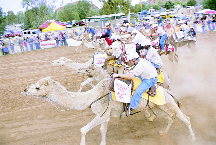 Alice Springs Camel Cup - 2004 | Credits 6738-NTTC