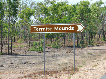 Termite Mounds road side turn in stop on the Arnhem Highway  | Credits RAB