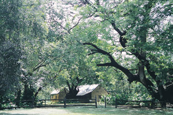 Springvale Homestead Elsey National Park | Credits NTTC6368